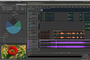 Screenshot Adobe Audition CC