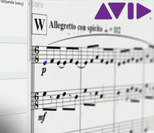 Avid Sibelius 2018 Notation Software Screenshot