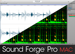 Audio Editor Sound Forge Pro Mac 2 Screenshot