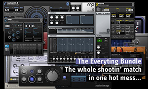 Screenshot Audio Damage Everything Bundle